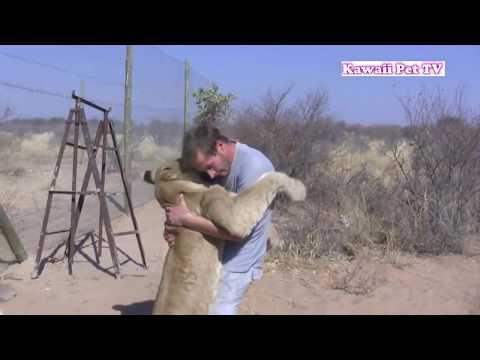 人間とライオンが抱き合うwidth=190