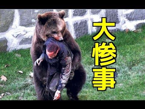 男性がクマに捕食されるwidth=190