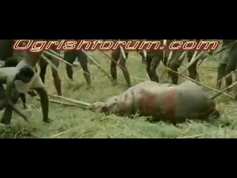 人間たちが槍で動物を狩るwidth=190