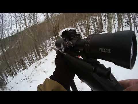 エゾシカを射撃するwidth=190